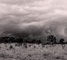 Storm rolling in by Claudia Harrison