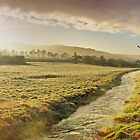 Misty Morning - Skirmett - Buckinghamshire - HDR by Colin J Williams Photography