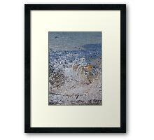 Shark Attack 2 Framed Print