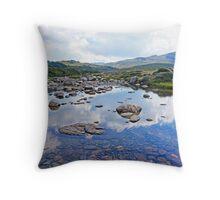 Snowy River Throw Pillow