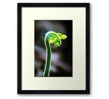 New Beginnings.... Framed Print