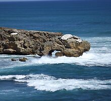 Rock and surf by John Witte