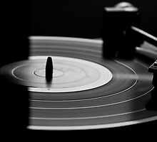 Black and White LP  by Veschetti