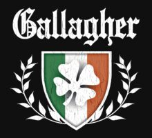 Gallagher Family Shamrock Crest (vintage distressed) by robotface