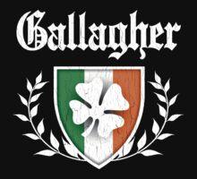Gallagher Family Shamrock Crest (vintage distressed) Kids Tee