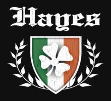 Hayes Family Shamrock Crest (vintage distressed) Kids Clothes