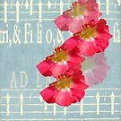 Music and Roses by Rosalie Scanlon