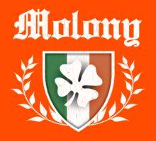 Molony Family Shamrock Crest (vintage distressed) Kids Tee