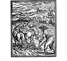 Holbein — Danse Macabre, agriculturist (copy) by Sigrlynn