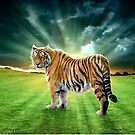 Let's Walk Towards The Sun, Said The Tiger by ewanthot