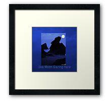 Sea Moon Gazing Hare Framed Print