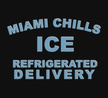 Miami chills ice refrigerated delivery by penguinua