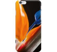 Strelitzia Flower iPhone Case/Skin