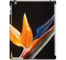 Strelitzia Flower iPad Case/Skin