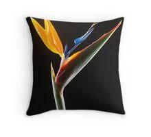 Strelitzia Flower Throw Pillow
