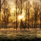 frosty morning sunrise by ArthakkerHDR