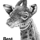 Baby Giraffe Birthday Card by Lorna Mulligan