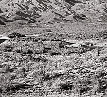 Lake Pleasant Vista in Black and White by Lee Craig