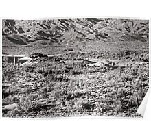 Lake Pleasant Vista in Black and White Poster