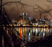 Portland through the trees by rkboz
