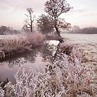 River Brett in winter by Christopher Cullen