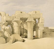 Temple of Sobek and Haroeris at Kom Ombo by Bridgeman Art Library