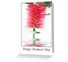 Happy Mother's Day Red Bottlebrush Flower Greeting Card