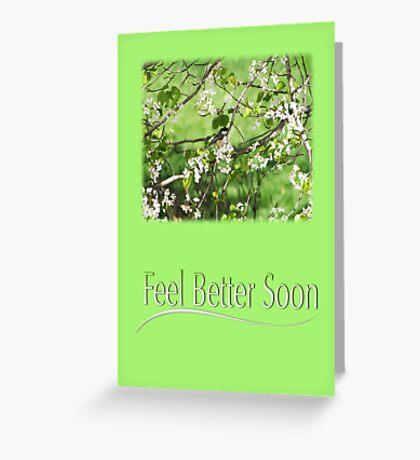 Feel Better Soon Black Cap Chickadee Greeting Card