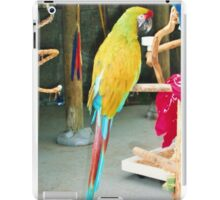 Parrot sitting on a stick iPad Case/Skin