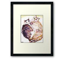 Cat Snuggles Framed Print