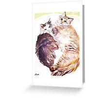Cat Snuggles Greeting Card