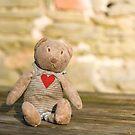 Abandoned Bear by Anne Gilbert