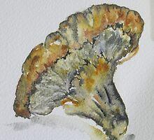 Mushroom by kest standley