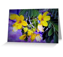 Splendid yellow flowers Greeting Card