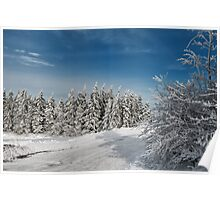 Snowy Country Lane Poster