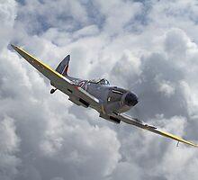Spitfire Mk XVI by Pat Speirs