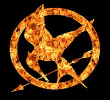 The Mockingjay Fire by EAMS