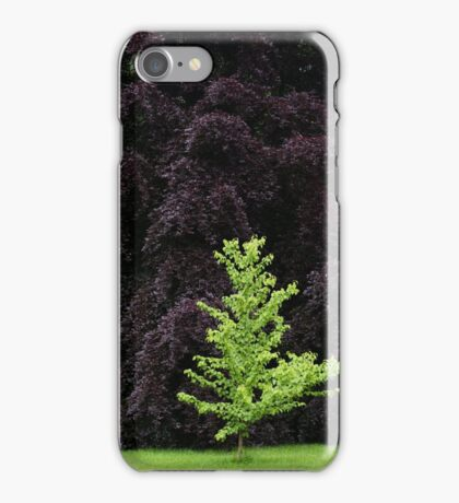 Beeches iPhone Case/Skin