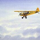 Piper J-3 Cub by bill holkham