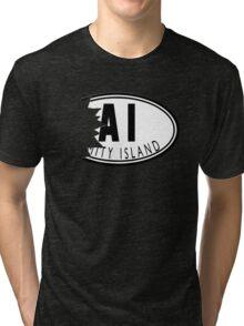 Amity means Friendship! Tri-blend T-Shirt