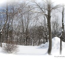 Snow Forest by DreamCatcher/ Kyrah