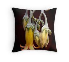 Tiffany Chandelier Throw Pillow