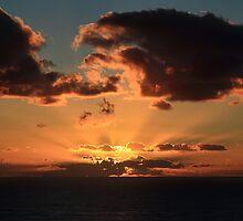 Morning Rays by Ann  Van Breemen