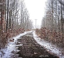 Old Snow Road HDR by Jeff Ore
