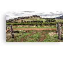 View from the Homestead Canvas Print