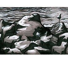 Seagull Shore by Elizabeth Aubuchon