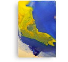 Macro Acrylic Paints  Canvas Print