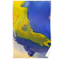 Macro Acrylic Paints  Poster
