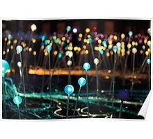 Field of Light, art installation, Edinburgh Poster