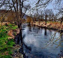 Winter am Fluss 1 by harietteh